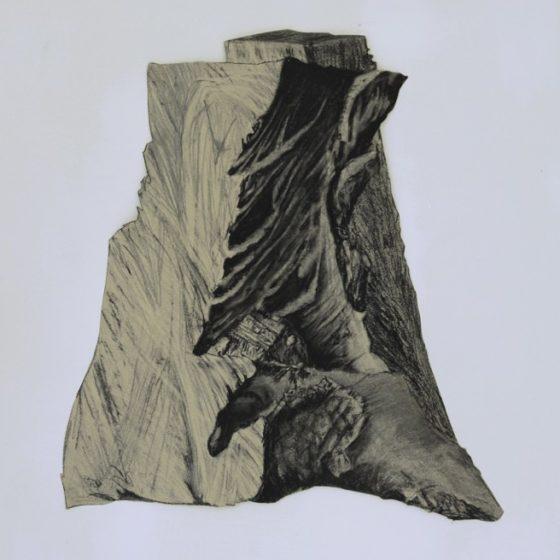 platanus 3, houtskool, siberisch krijt en potlood op papier, circa 40 x 35 cm, 2019