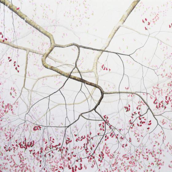 Bloesem 2, 2020, Potlood op papier, 80 x 70 cm.