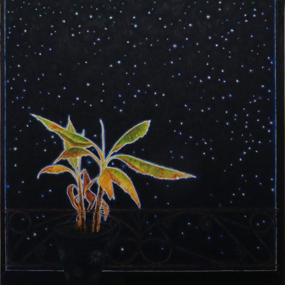 banaan, 80 x 88 cm, olieverf op doek, 2020
