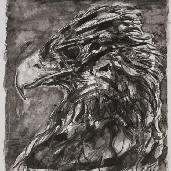 golden eagle, 35 x 30 cm, inkt op papier, 2018