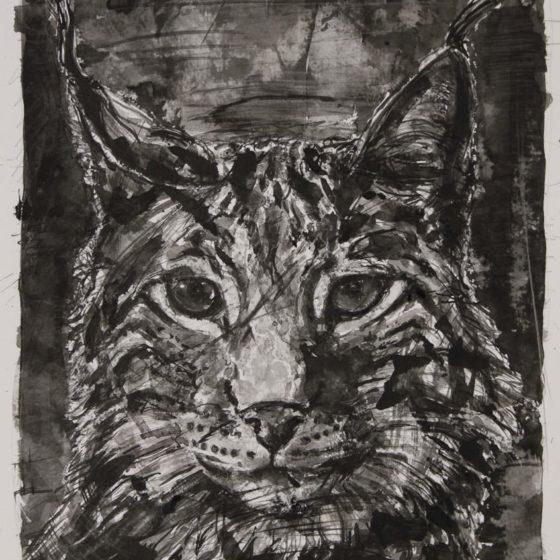 nachtjager, 35 x 30 cm, inkt op papier, 2018