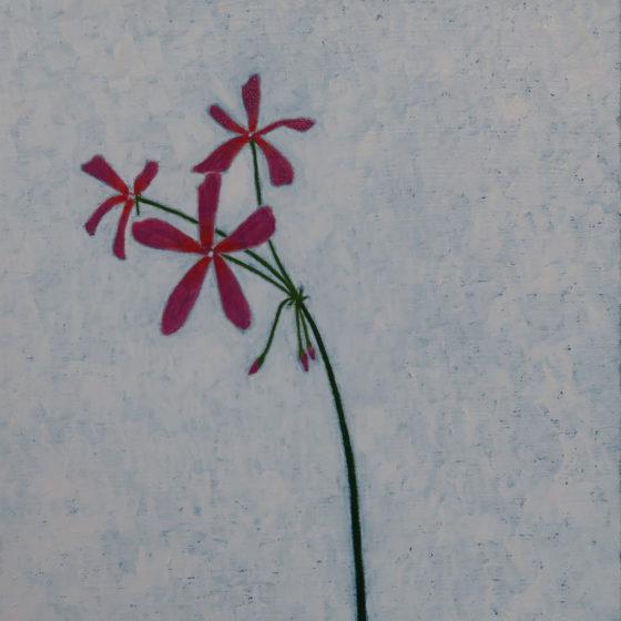 madame salleron, 24 x 25 cm, olieverf op doek, 2020