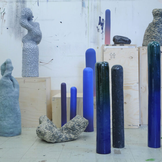 1. Overzicht installatie 'Bodies for possible landscapes' in het atelier