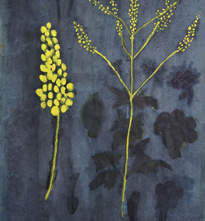 nightflower, Gemengde techniek op papier A4-formaat