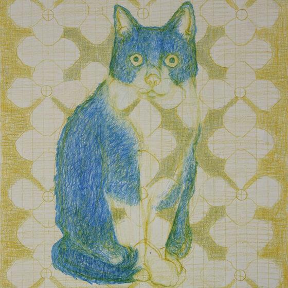 fabulous creatures 3, polychromos potlood op papier, 34 x 27 cm.