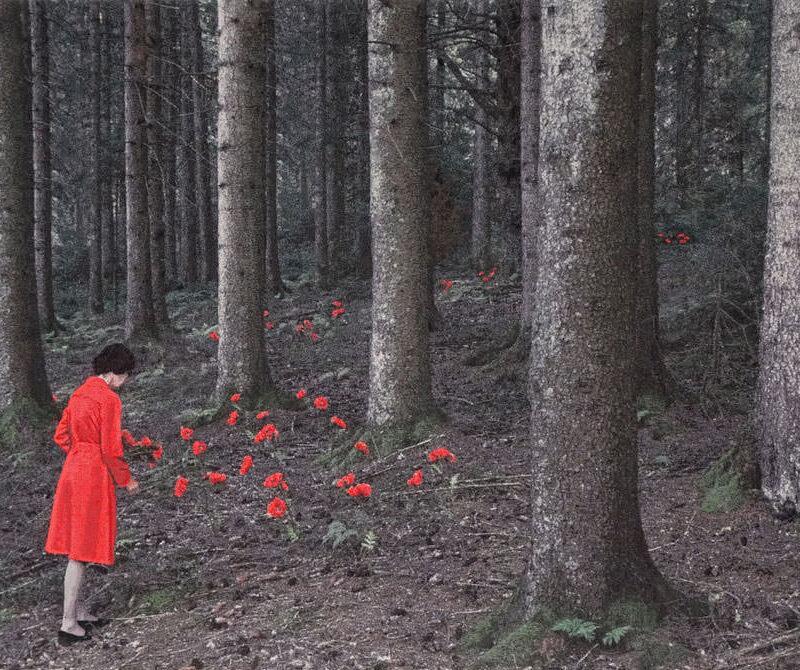 Le petit chaperon rouge, gobelin, 119x196 cm.
